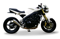 Picture for category SPEED TRIPLE  2005-2006
